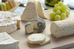 法国乳酪盛肉盘 图库摄影