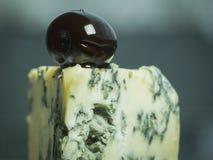 法国乳酪羊乳干酪用在灰色被弄脏的背景的一颗黑橄榄 免版税图库摄影