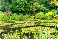 法国吉韦尔尼莫内的庭院在一个春日 库存照片