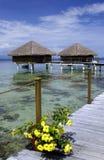 法国和平的波里尼西亚南塔希提岛 图库摄影