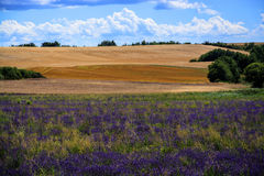 法国小山 库存图片