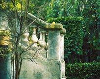 法国庭院绿色 库存图片