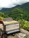 法国手风琴 库存图片