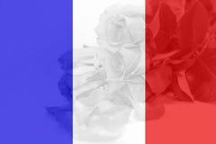 法国旗子有玫瑰色背景 库存图片