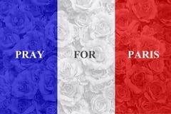 法国旗子有玫瑰色背景 免版税图库摄影