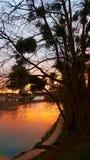 法国河 库存照片