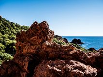 法国海岸的粗砺的原野 免版税库存照片