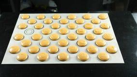 法国点心面团的曲奇饼准备好烘烤 库存图片