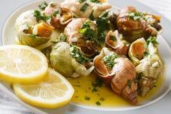 法国烹调:与蒜酱油和柠檬克洛的海洋蜗牛bulot 免版税库存图片
