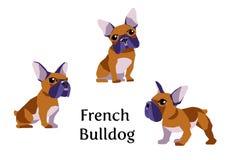 法国牛头犬用不同的姿势 向量例证