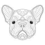 法国牛头犬小狗头zentangle传统化了,导航, illustrati 库存图片