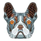 法国牛头犬头zentangle传统化了,导航,例证, fr 图库摄影