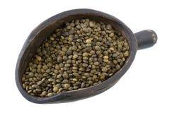 法国绿色扁豆瓢 免版税库存图片
