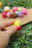法国蛋白杏仁饼干多五颜六色是可口的 免版税库存图片