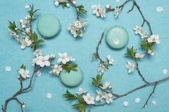 法国蛋白杏仁饼干点心和花在绿松石背景 免版税库存照片
