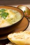 法国韭葱汤 库存照片