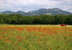 法国风景:在普罗旺斯 免版税图库摄影