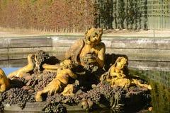 法国,一个喷泉在凡尔赛宫公园 免版税库存照片