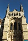 法国,利雪美丽如画的大教堂  免版税库存照片