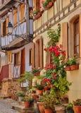 法国,美丽如画的老房子在埃吉桑在阿尔萨斯 免版税库存图片