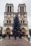 巴黎法国, 2014年11月:在冬天圣诞节期间的假日在法国-巴黎圣母院和游人 库存图片