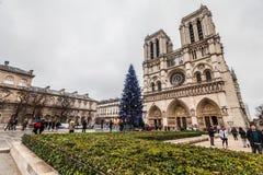 巴黎法国, 2014年11月:在冬天圣诞节期间的假日在法国-巴黎圣母院和游人 免版税图库摄影
