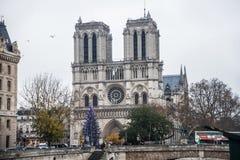 巴黎法国, 2014年11月:在冬天圣诞节期间的假日在法国-巴黎圣母院和游人 免版税库存照片