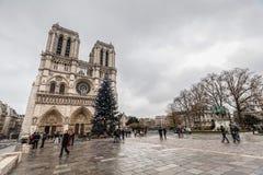 巴黎法国, 2014年11月:在冬天圣诞节期间的假日在法国-巴黎圣母院和游人 库存照片