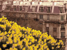 法国montmartre巴黎 库存图片