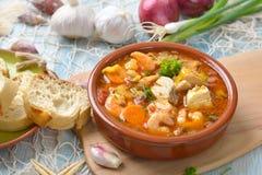 法式海鲜汤 免版税库存图片