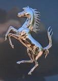 法拉利镀铬物` Cavalino腾跃的马`徽章 图库摄影