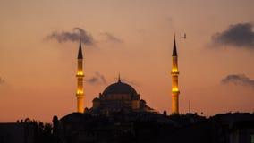 法提赫Camii征服者` s清真寺在伊斯坦布尔,土耳其 黄昏,鸟在剪影飞行 库存照片