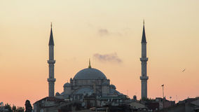 法提赫Camii征服者` s清真寺在伊斯坦布尔,土耳其 黄昏,鸟在剪影飞行 库存图片