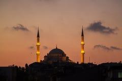 法提赫Camii征服者` s清真寺在伊斯坦布尔,土耳其 黄昏,鸟在剪影飞行 免版税图库摄影