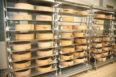 法萨的乳酪心脏 免版税库存图片