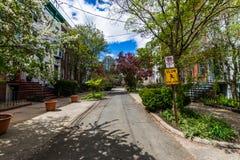 法院街道历史的区在Wooster广场在纽黑文 免版税库存图片