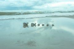 泡影在与陶瓷鲸鱼家庭的天空中 免版税库存图片