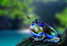 泡影青蛙狩猎昆虫 库存照片