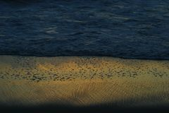 泡沫似的波浪和湿沙子在日落 免版税库存照片