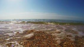泡沫似的波浪跑由海岸和撤退决定 股票录像