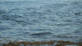 泡沫似的海波浪洗涤岩石岸 小波浪在一个夏天休息日塞浦路斯海岸  股票录像