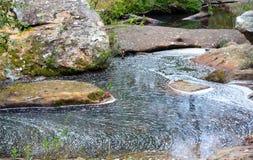 泡沫和波纹在森林小河 库存照片
