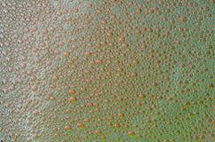 泡沫在红色和绿色纹理背景起泡 免版税库存照片