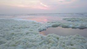 泡沫海藻鸟瞰图沿荷兰海岸的 影视素材