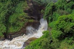 泡沫的默奇森Falls乌干达 图库摄影