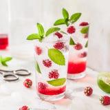 泡沫腾涌的莓鸡尾酒 库存图片