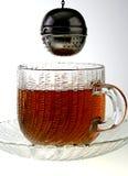 泡的茶 库存图片