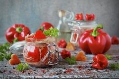 泡菜用红萝卜和甜椒在玻璃瓶子 库存图片