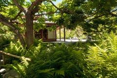 巴波亚公园的平静的日本友谊庭院在圣二 免版税库存图片