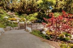 巴波亚公园的平静的日本友谊庭院在圣二 免版税图库摄影